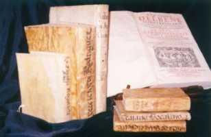 libros-el-7.jpg
