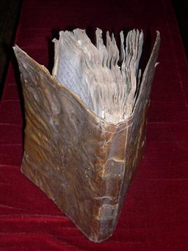 llibre-antic-de-pardines.jpg